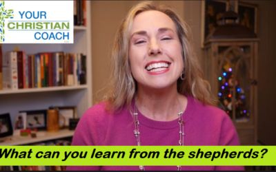 What can you learn from the shepherds?